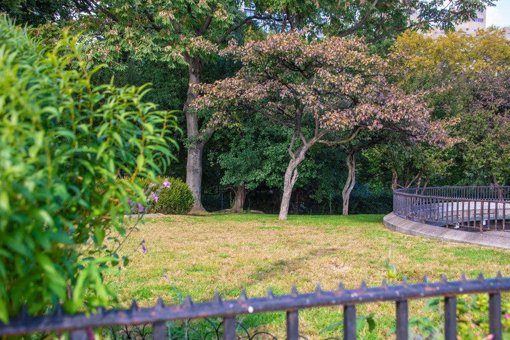 LSNY-Upper-East-Side-48.jpg