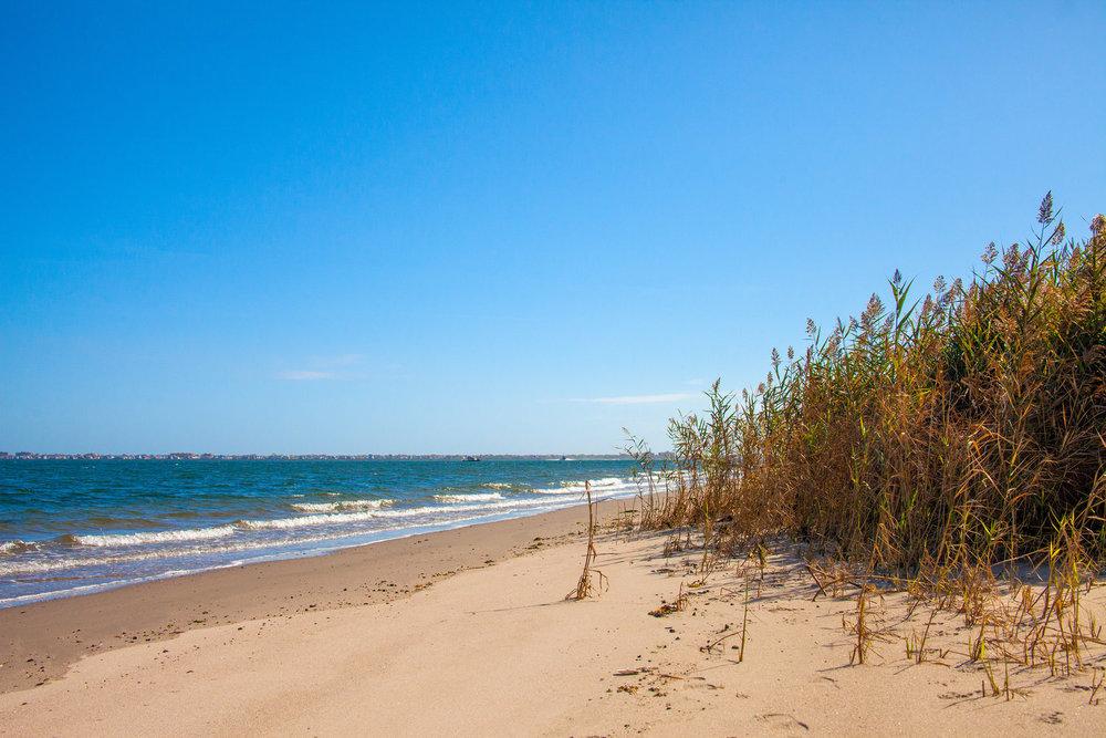 Walk Along the Bay -