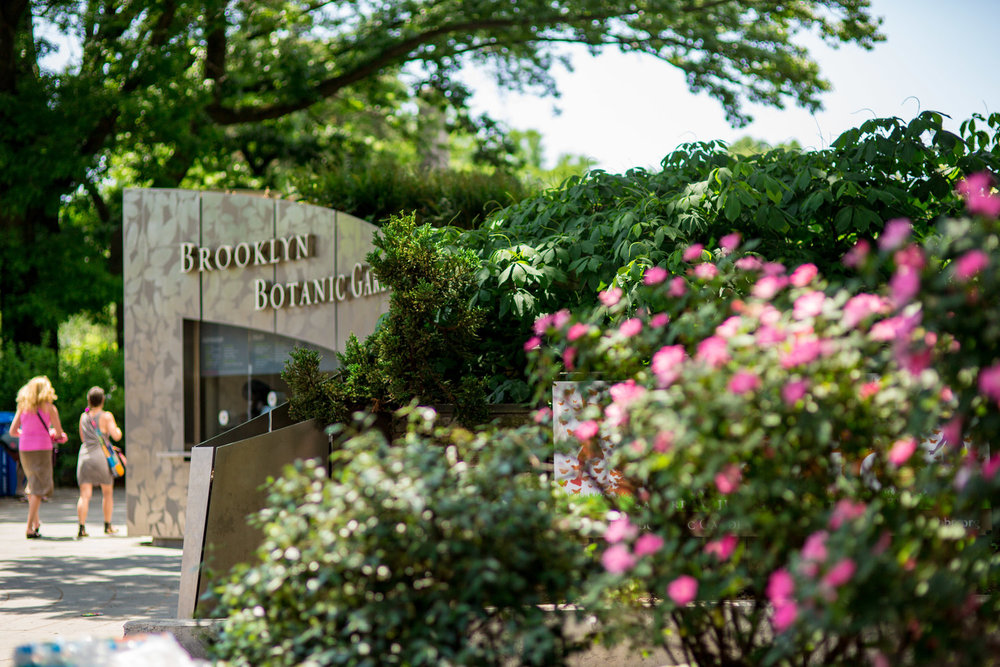 Brooklyn Botanical Garden -