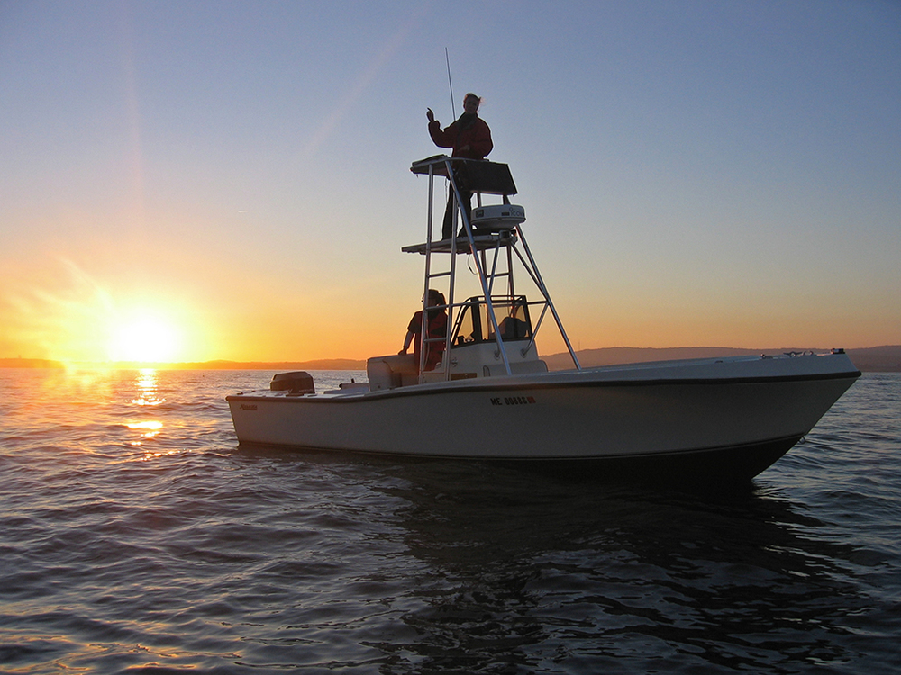Alison Langley on board her 25' Mako chase boat, TANGENT