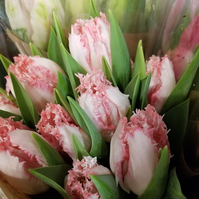 Feeling like Spring at @dermarktatmarklin with Dutch Tulip bunches, Hyacinth Bunches and mixed Spring bunches!!