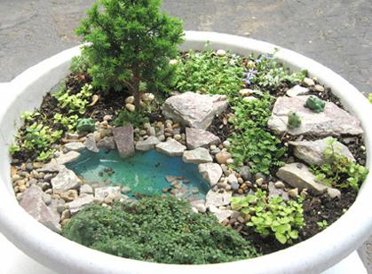 Fairy Garden with Water Element