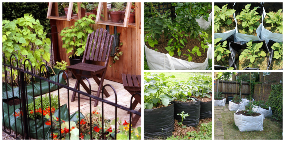 Grow bags come in many sizes, from petite and cute to big enough to hold a dwarf fruit tree
