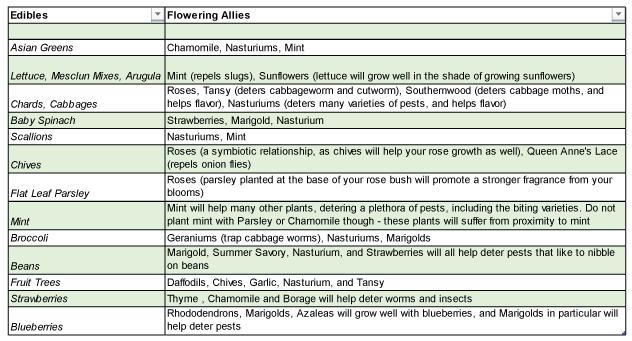 Edible plants and their ornamental allies