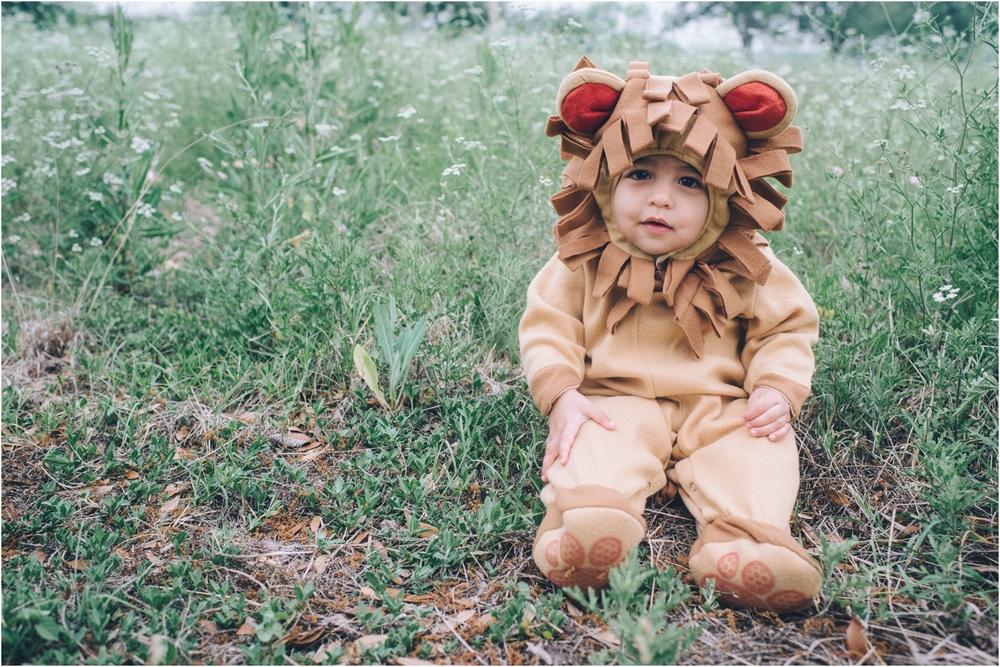 lion_0001.jpg