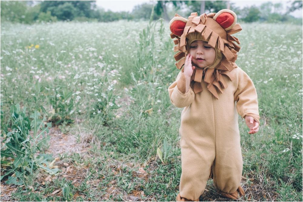 lion_0002.jpg