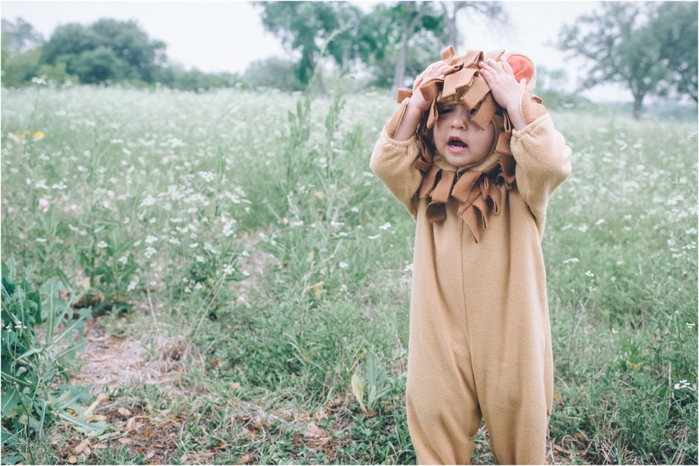 lion_0003.jpg