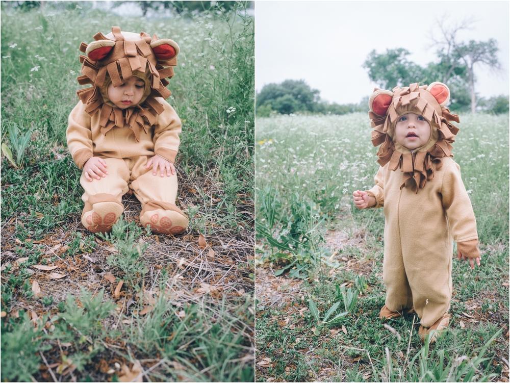 lion_0005.jpg