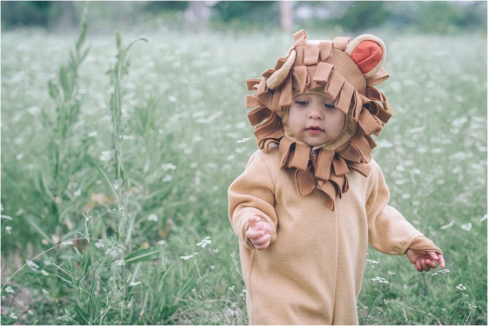 lion_0010.jpg