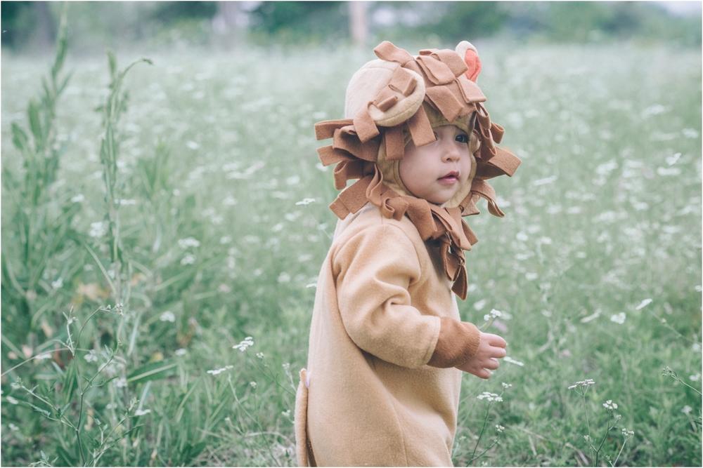 lion_0009.jpg