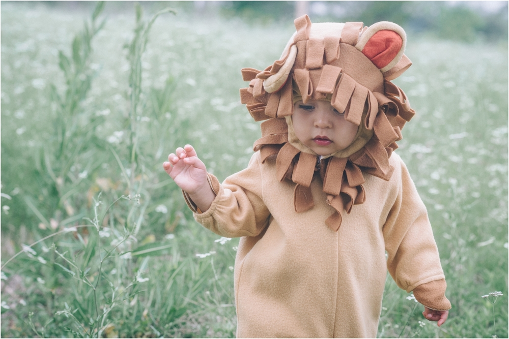 lion_0012.jpg