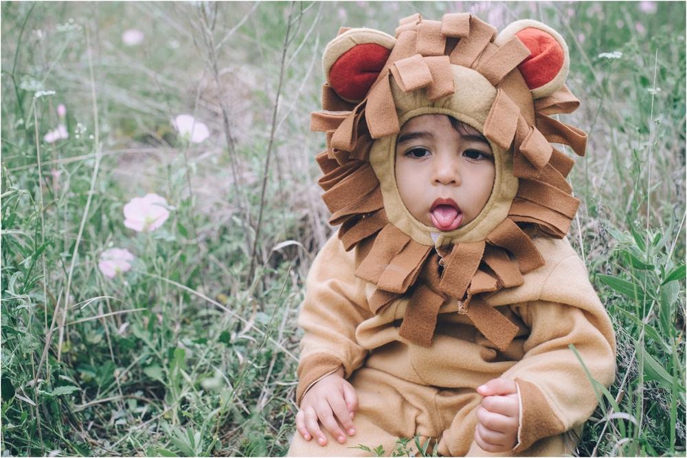 lion_0016.jpg
