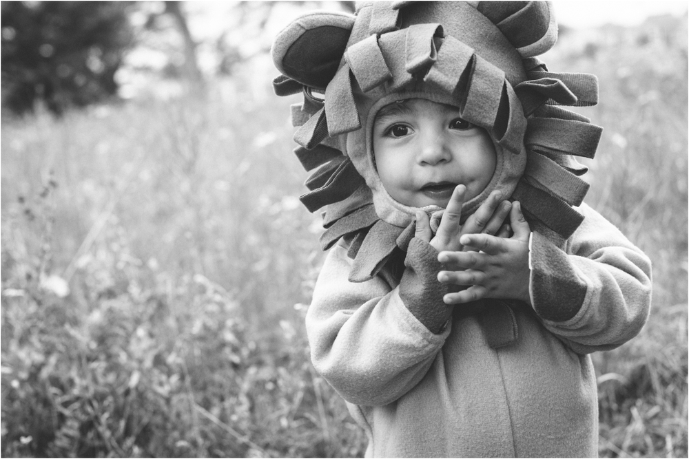lion_0022.jpg