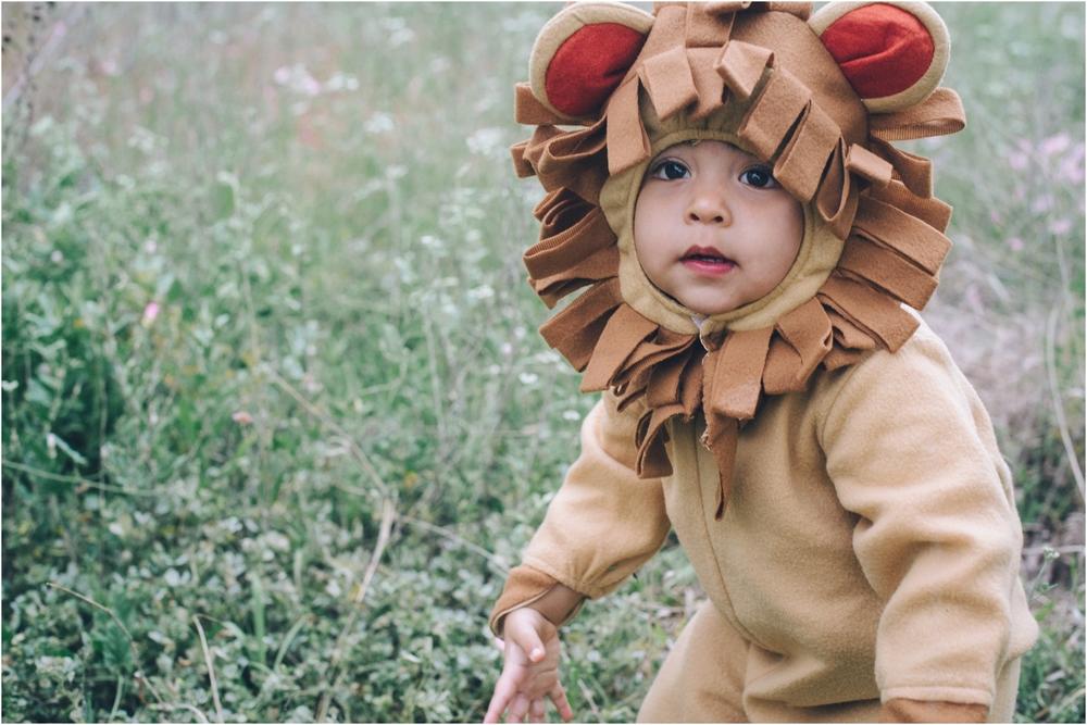 lion_0023.jpg