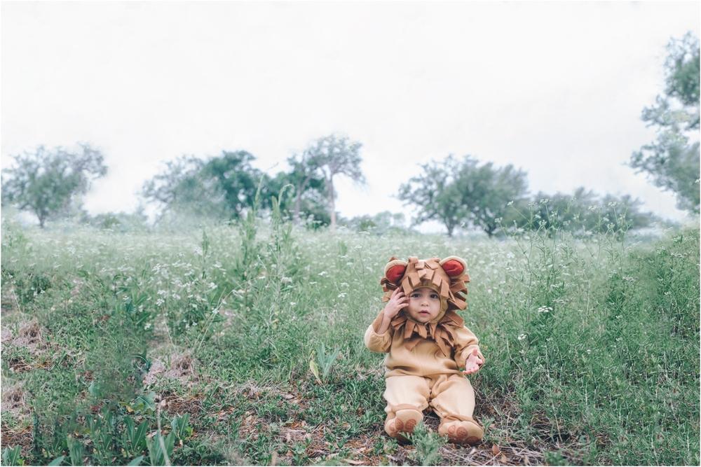 lion_0026.jpg