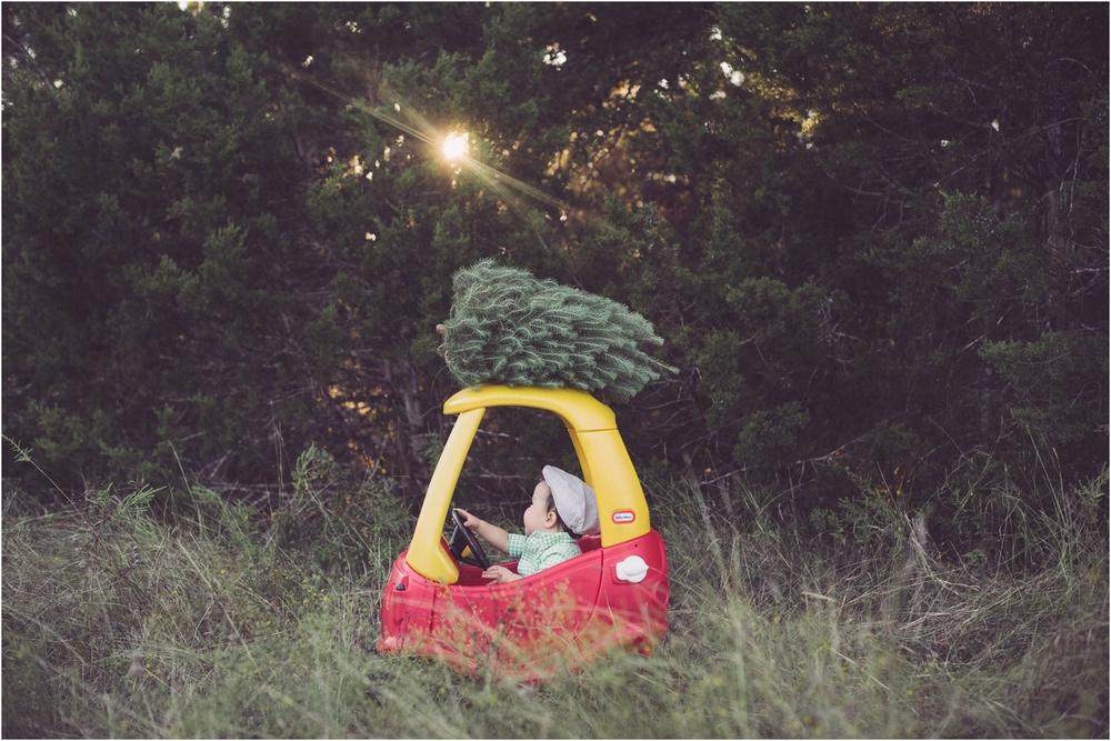 tree_0010.jpg