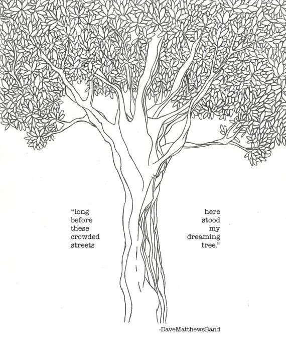 TREE HOUSE PROUDLY SERVES DREAMING TREE WINE - CLICK ABOVE TO LEARN MORE
