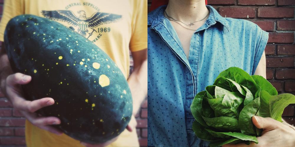 watermelon lettuce babies diptych.jpg