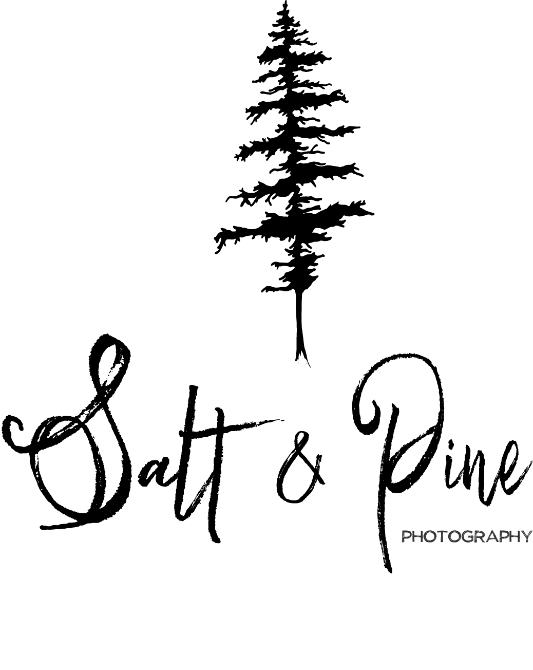 Salt + Pine Photography