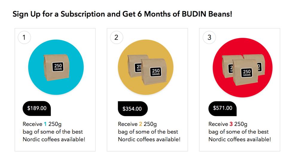Budin-Bean-Subscription-big4.png