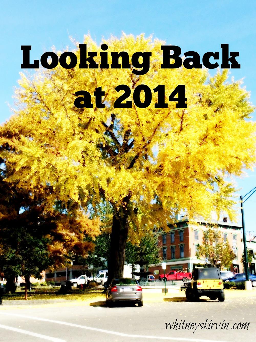 lookingbackat2014.jpg