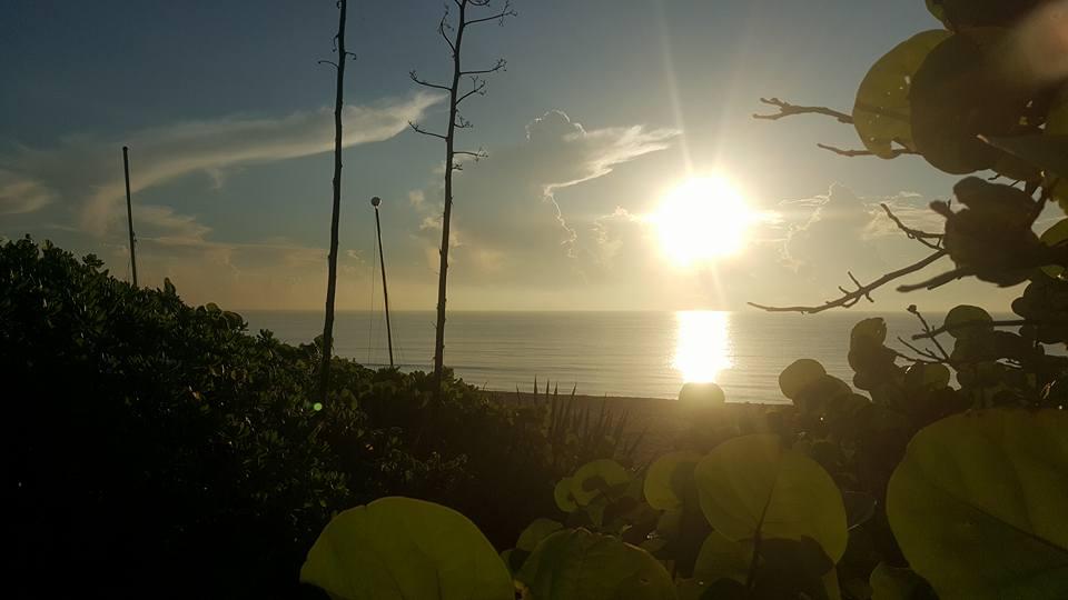Briny Breezes Sunrise Spring.jpg