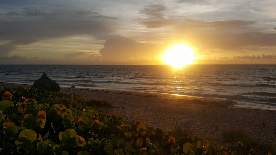 Briny Breezes Sunrise Summer.jpg