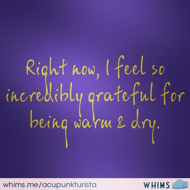 #gratitude #appreciatethesmallthings #gratitudeisthebestattitude #whims (at inner space)