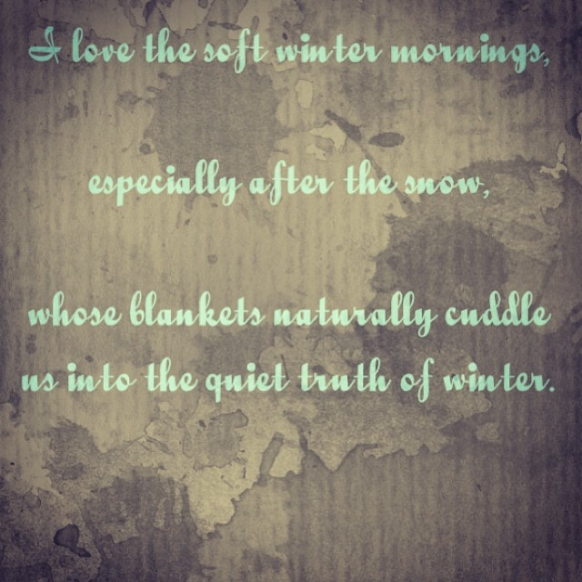 #winterwisdom #winter #snow #quiet #fiveelements (at inner space)
