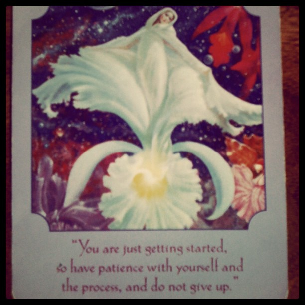 <3 encouragement <3  #tarot #encouragement (Taken with  instagram )