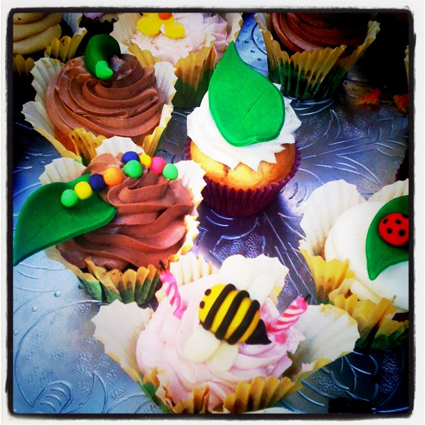 #cupcakewonderland!! Cupcakes are truly food for the soul.  (Taken with  Instagram )