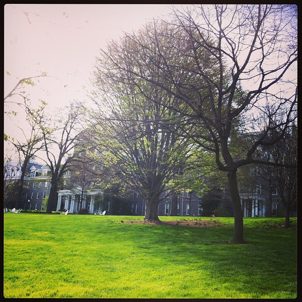 #swarthmore campus for #springadventures !