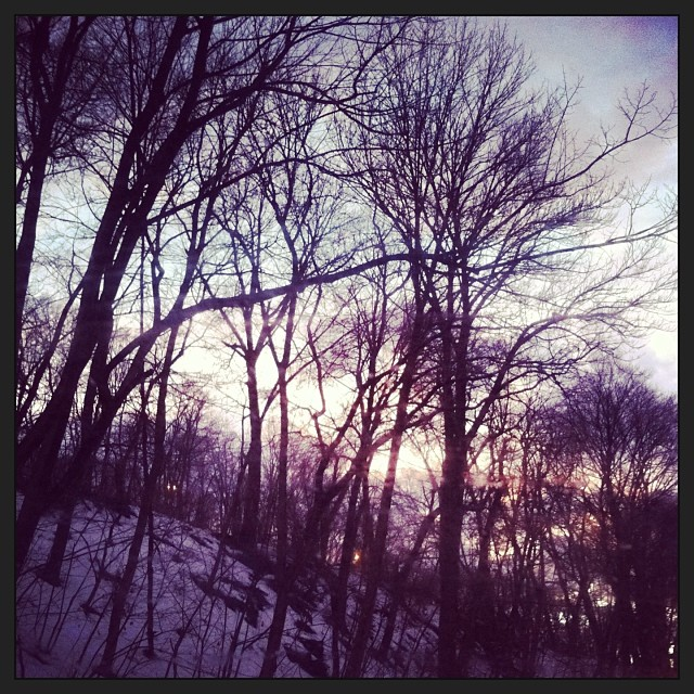 I am really savoring the last if the #winterlandscape. I'm really going to miss it. So gorgeous!! (at Mama Nature)