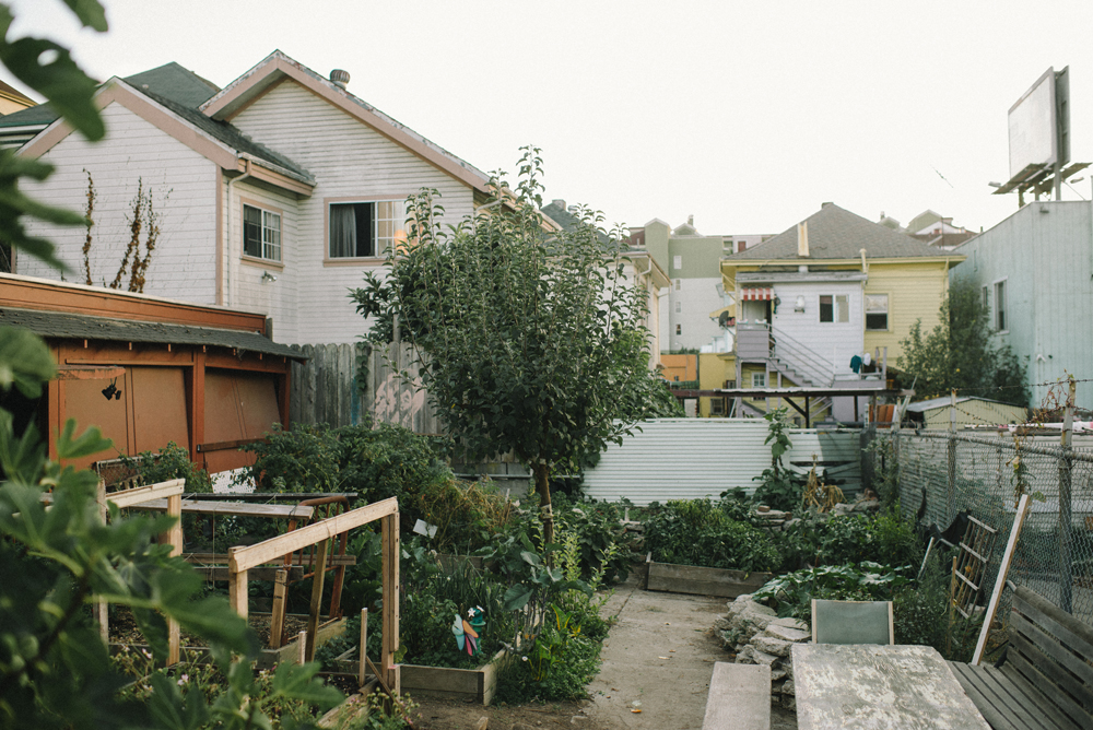 Urban Farm | The Honest Home Podcast
