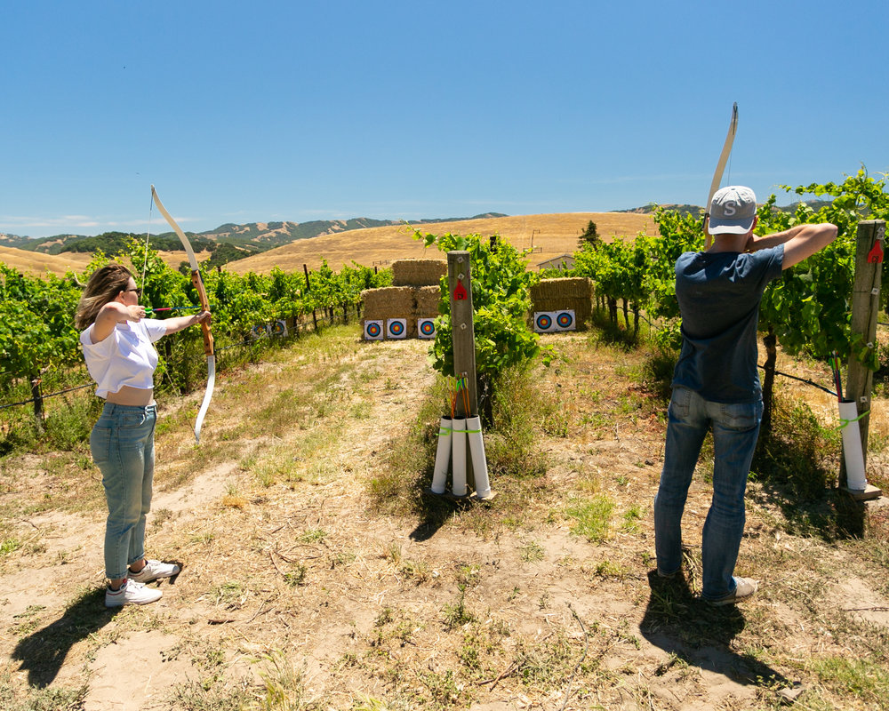 Archery in the Vineyard