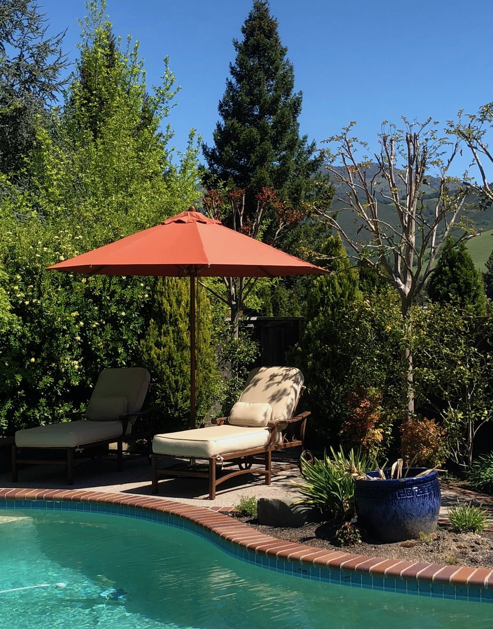 The 11' Round Levante Center Pole Bamboo Market Umbrella provides shade for chaise lounges by the pool.