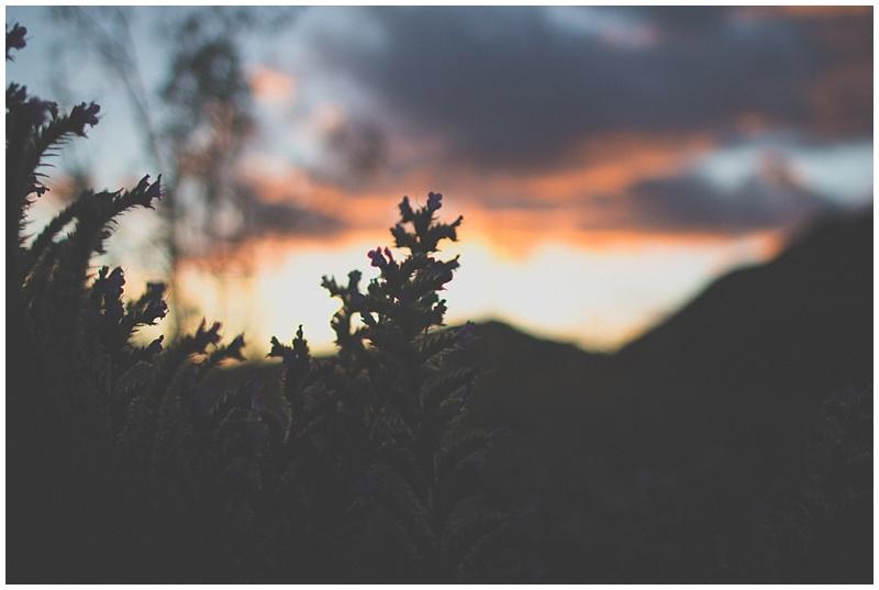 Blog_0088.jpg