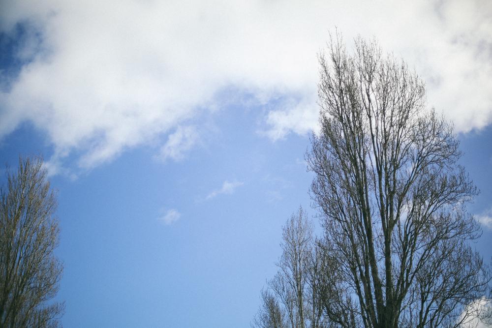 AfternoonStroll-38.jpg