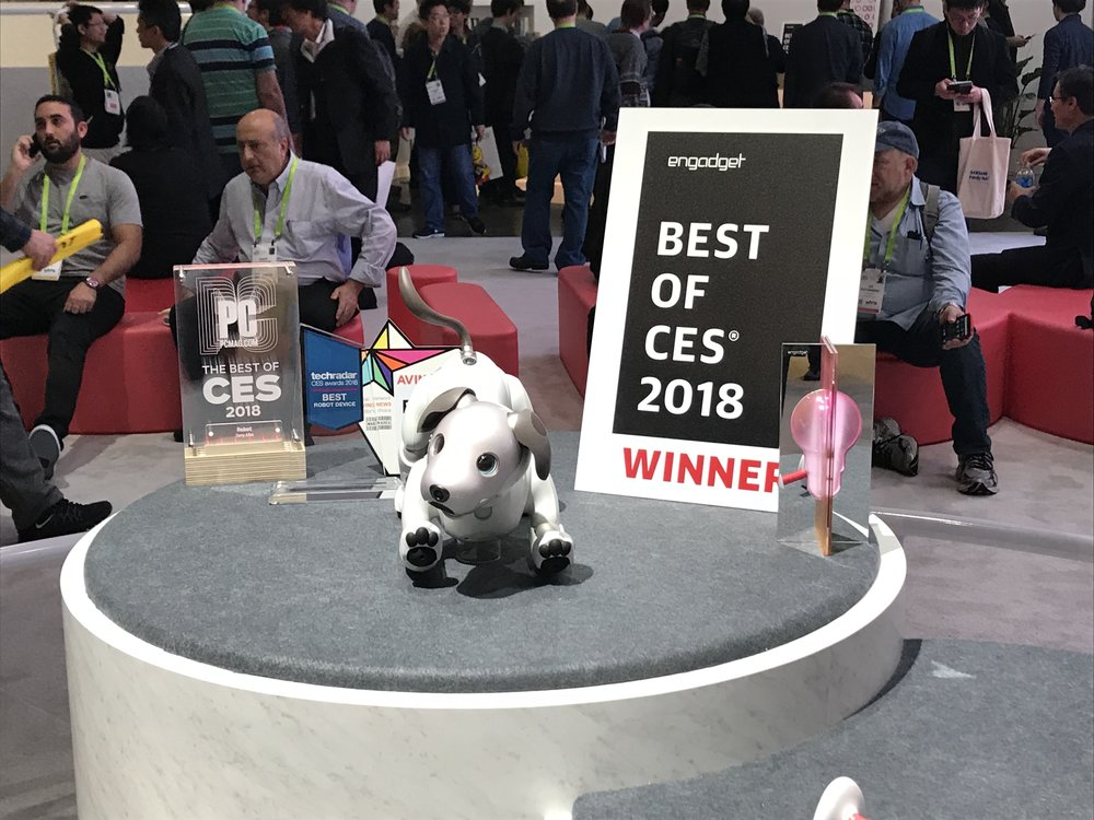 Sony's Aibo robotic dog that sells for $1,800 USD.