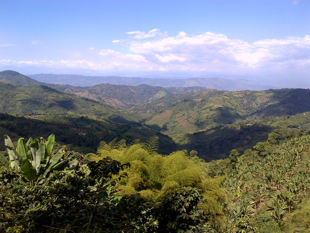 View from Patio Bonito in La Celia
