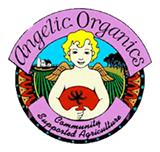 news_angelic_logo.jpg.png