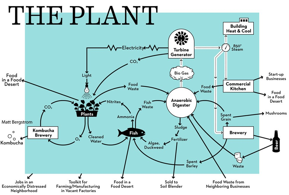 1316455450-theplantdiagram.jpg