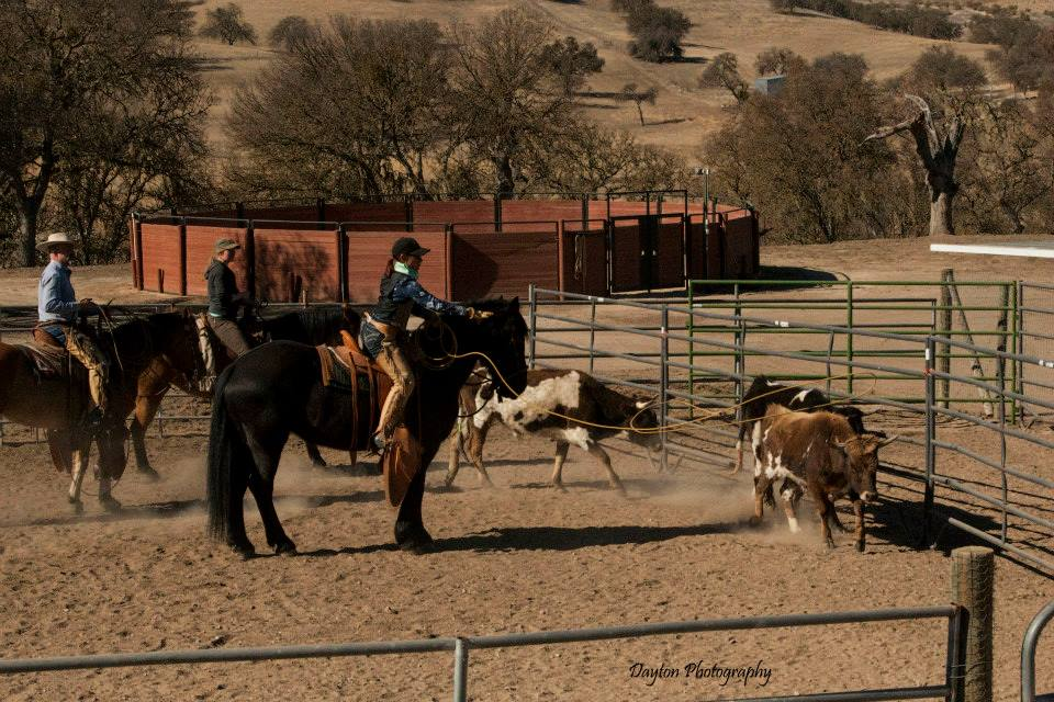 Ranch Roping, yep, I'll try to master this, too