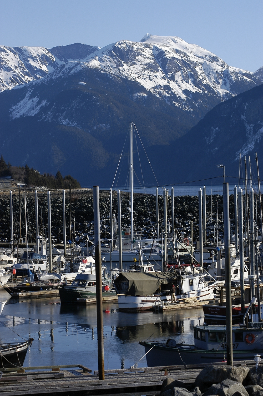 Small boat harbor, Haines, Alaska