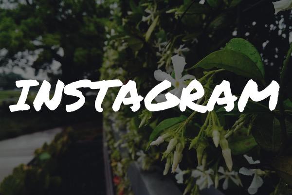 Slow Commerce Instagram Icon