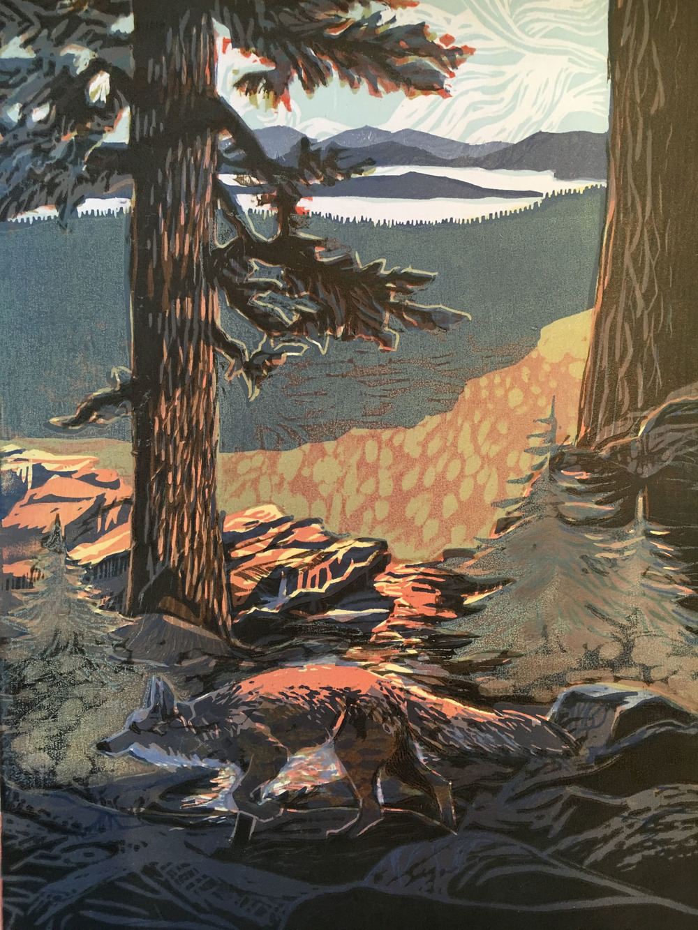 """Glimpse of Sierra Nevada Fox and Lake Almanor ©2015"