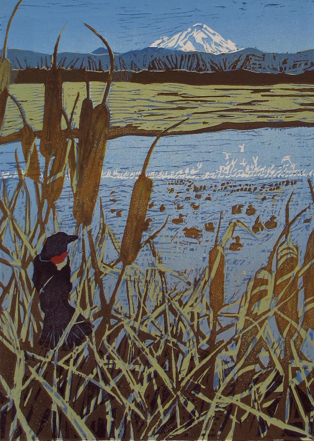 snow geese on tule lake ©2014