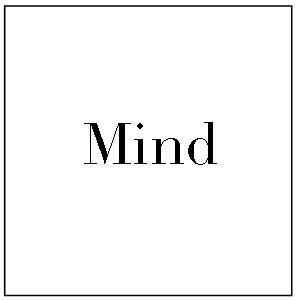 mind 2.jpg