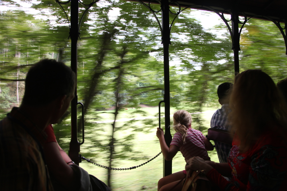 On the tram to the Grottes de Han, Belgium's answer to Luray Caverns.
