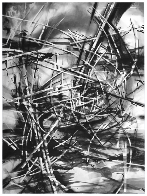 "Artist: Scott Tulay  Name: Fly  Year: 2015  Size: 30"" wide x 40"" high  Method: ink, graphite and charcoal  Condition: original"